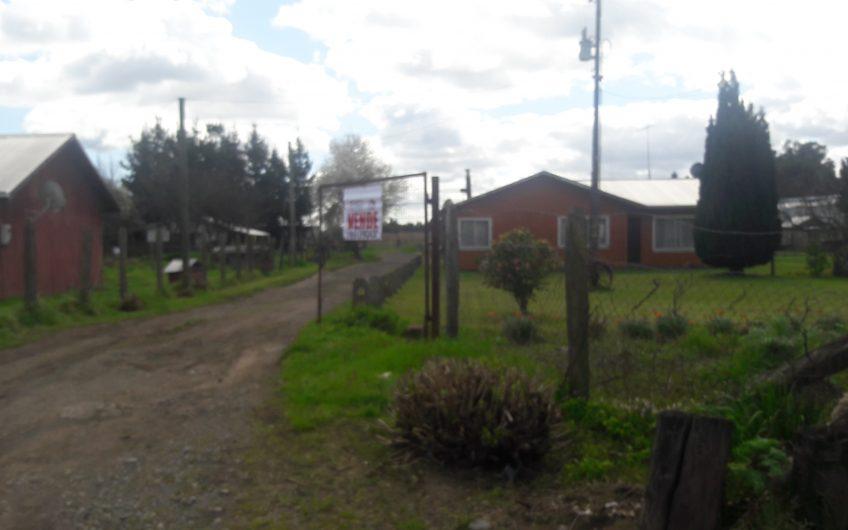Se Vende Hectáreas Agrícolas Camino a Nacimiento.